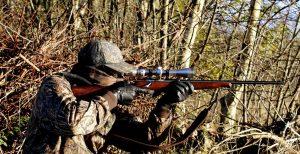 bolt-action-rifle