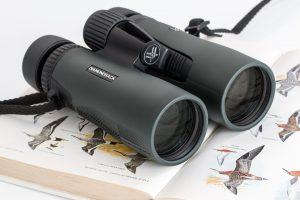 Good Hunting Binoculars on a Budget (2020 Reviews)