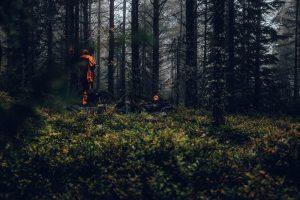 Hunters wearing blaze orange vests
