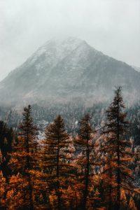 Late autumn season
