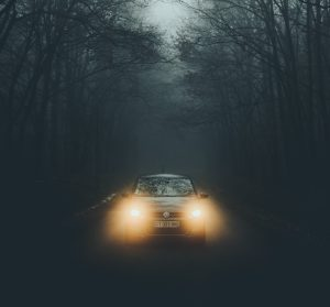 Headlights often startle deer
